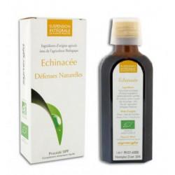 synergia échinacée sipf 100 ml