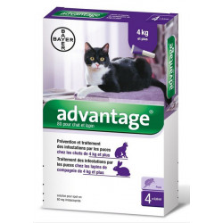 advantage 80 chat et lapin 4 pipettes