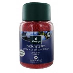 kneipp cristaux de sel pour le bain genévrier 500 g
