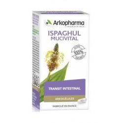arkogélules ispaghul mucivital 45 gélules