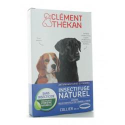clément thékan collier insectifuge naturel chien