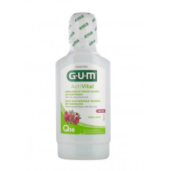 Gum Activital Mouthwash 300 ml
